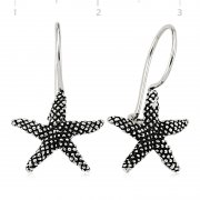 Sea Starı Silver Earring